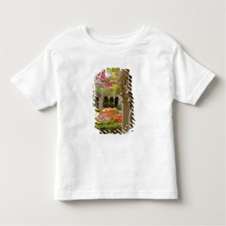 France, St. Remy de Provence, cloisters at Toddler T-Shirt