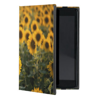 France, Vaucluse, sunflowers field Case For iPad Mini