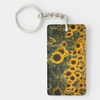 France, Vaucluse, sunflowers field Key Ring