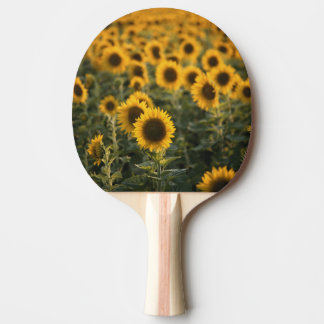 France, Vaucluse, sunflowers field Ping Pong Paddle