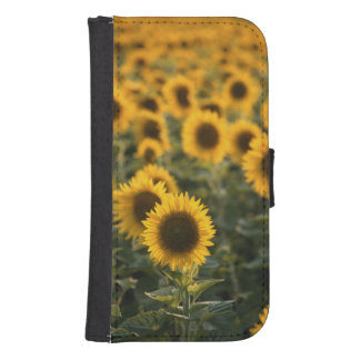 France, Vaucluse, sunflowers field Samsung S4 Wallet Case