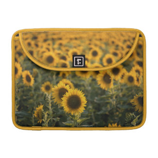 France, Vaucluse, sunflowers field Sleeves For MacBooks