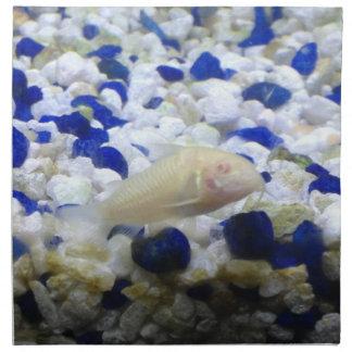 Francis the albino cat fish cloth napkin