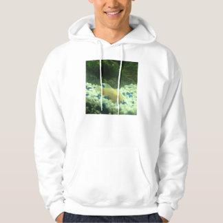 Francis the albino catfish hoodie