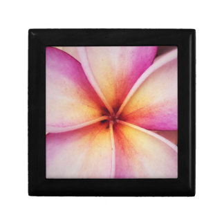 Frangipane Flower Jewellery/Gift Box
