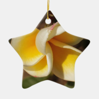 Frangipani Flower Ceramic Star Decoration
