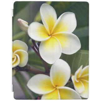 Frangipani flower Cook Islands iPad Cover