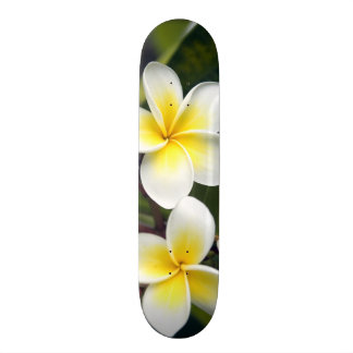 Frangipani flower Cook Islands Custom Skate Board