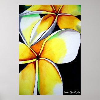 Frangipani flower poster by Sacha Grossel Art