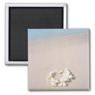 Frangipani on the beach refrigerator magnet