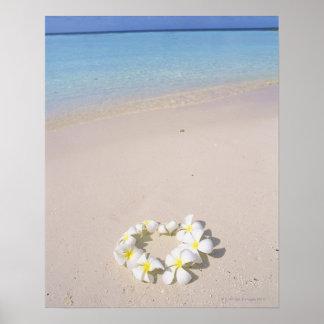 Frangipani on the beach poster