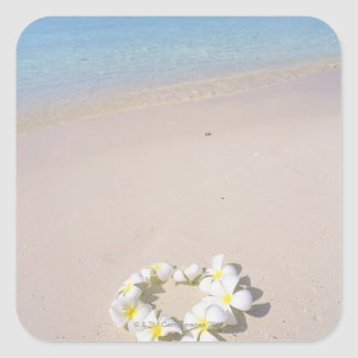 Frangipani on the beach square sticker