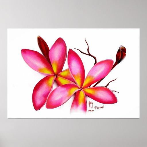 Frangipani Pink Print