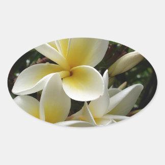 Frangipani Tree Blossoms Destiny Peace Love Flora Sticker