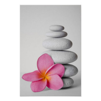 Frangipani Zen Poster