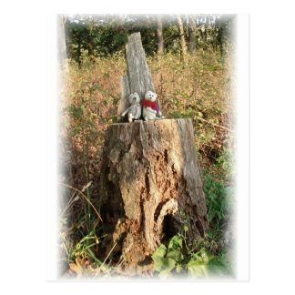 Frank&Lennart on the magic tree stump Post Card