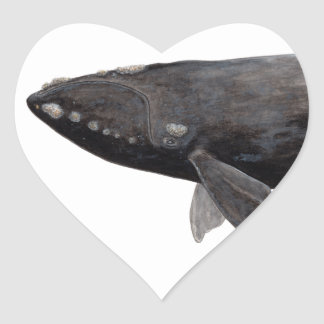 Frank whale of Atlantic Heart Sticker