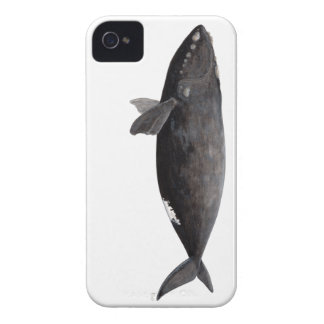 Frank whale of Atlantic iPhone 4 Case