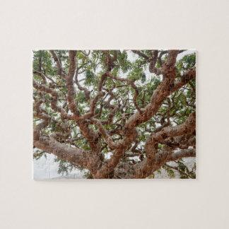 Frankincense Trees, Homhil Plateau, Socotra Island Jigsaw Puzzle