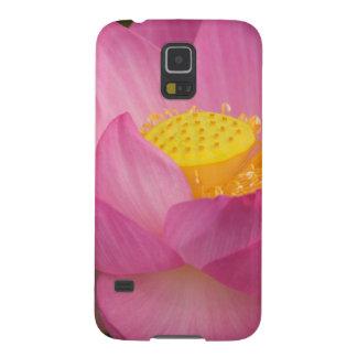 Franklin NC, Perry's Water Garden, Lotus 2 Galaxy S5 Case