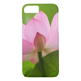 Franklin NC, Perry's Water Garden, Lotus iPhone 8/7 Case