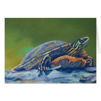 frank's turtle closeup card