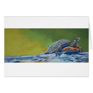 Frank's Turtle red eared striper Card