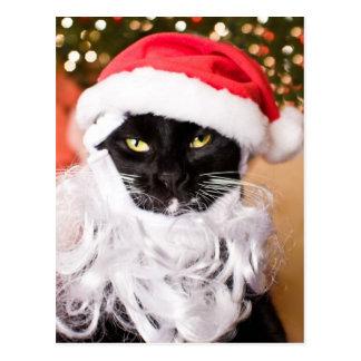 Franny Claus Sad Santa Kitty Postcard