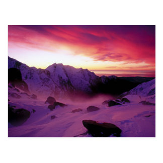 Franz Josef Glacier in New Zealand Postcard