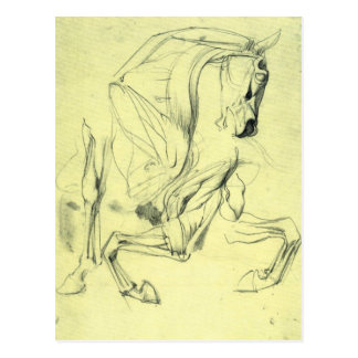 Franz von Stuck - Horse study Postcards