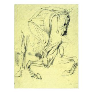 Franz von Stuck - Horse study Postcard