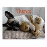 """Französische Bulldoggen Postkarte """"Thanks"""""""