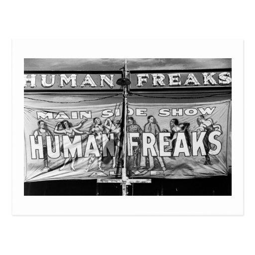 Freak Show, 1940s Postcards