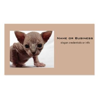 Freaky Cute Furless Sphynx Kitten Business Card Templates