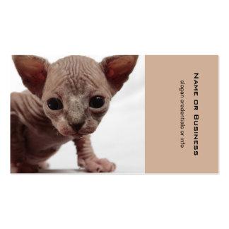 Freaky Cute Furless Sphynx Kitten Business Card