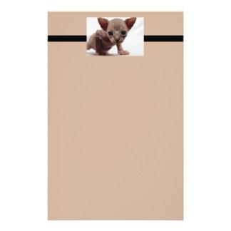 Freaky Cute Furless Sphynx Kitten Custom Stationery