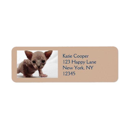 Freaky Cute Furless Sphynx Kitten Return Address Label