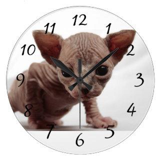 Freaky Cute Furless Sphynx Kitten Wall Clocks