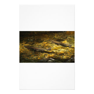 Freash water Trout. Stationery