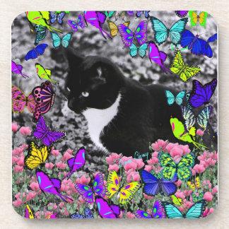 Freckles in Butterflies II - Tuxedo Cat Drink Coaster