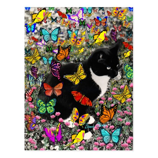 Freckles in Butterflies - Tux Kitty Cat Post Cards