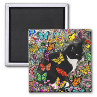 Freckles in Butterflies - Tuxedo Kitty Square Magnet