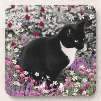 Freckles in Flowers II - Black White Tuxedo Cat Coasters