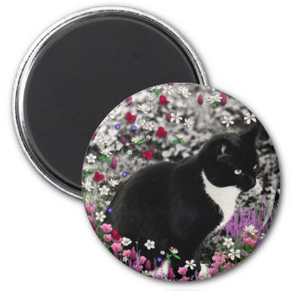 Freckles in Flowers II - Tux Kitty Cat Magnets