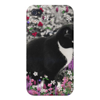 Freckles in Flowers II - Tuxedo Cat iPhone 4/4S Covers