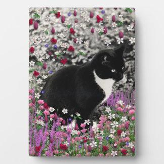 Freckles in Flowers II - Tuxedo Kitty Cat Plaque