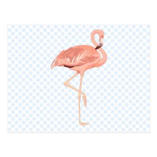 Freddy Flamingo Postcard
