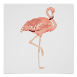 Freddy Flamingo Poster