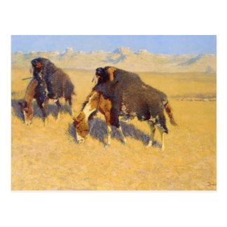 Frederic Remington - Indians Simulating Buffalo Postcard