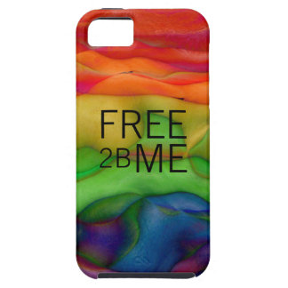 Free 2B Me Gay Pride Funky Rainbow Case For The iPhone 5